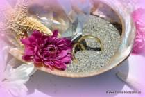 Florida-Hochzeiten Deluxe Shell