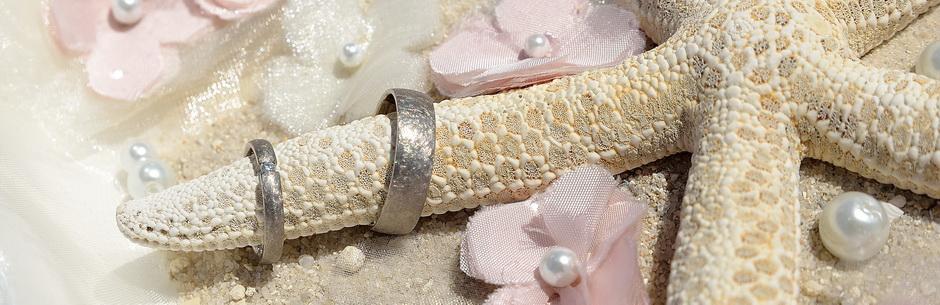 Heiraten in Florida mit Florida Hochzeiten Seestern mit Perlen und Eheringen
